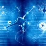 neuroni optogenetica